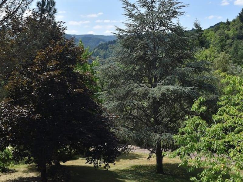 Vente de prestige maison / villa St martin de valamas 445000€ - Photo 14