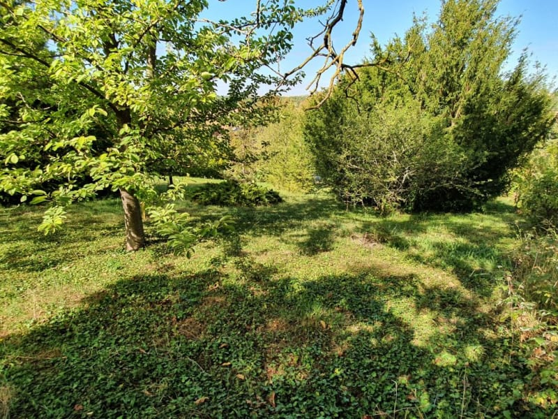 Vente maison / villa Villemanoche 148000€ - Photo 10