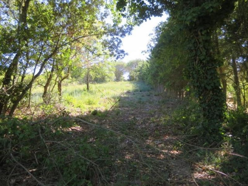Vente terrain Carcassonne 69 500€ - Photo 5