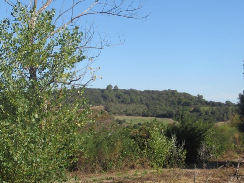 Vente terrain Carcassonne 69000€ - Photo 5