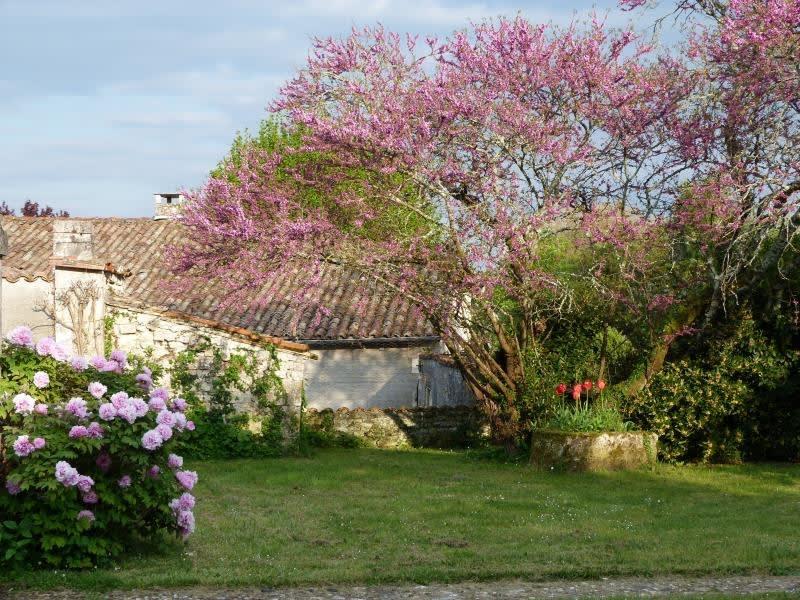 Sale house / villa St andre de cubzac 328600€ - Picture 4