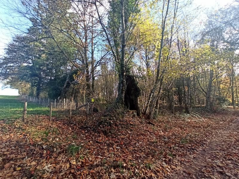 Vente terrain Cieux 29500€ - Photo 2