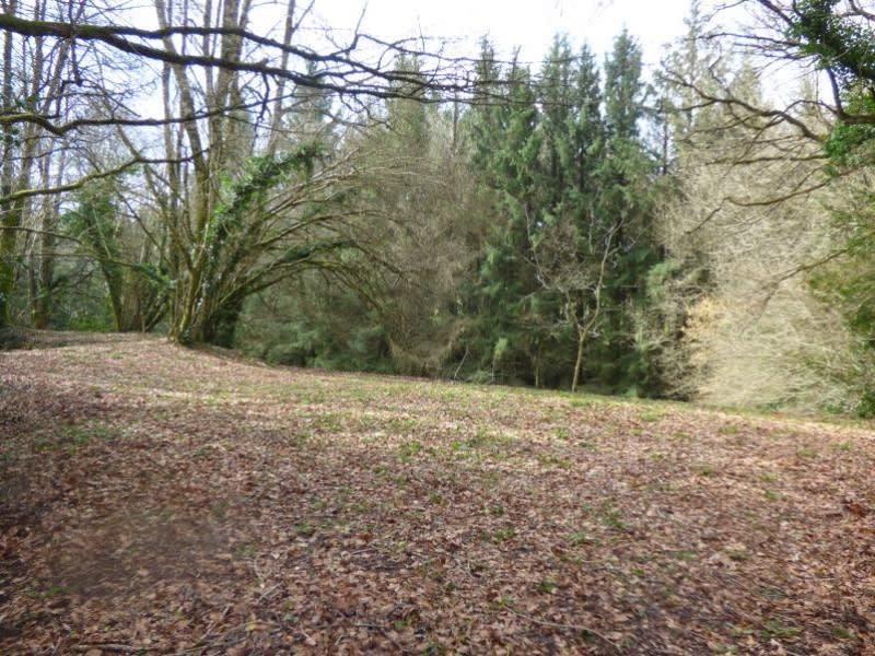 Vente terrain St amans valtoret 75000€ - Photo 4