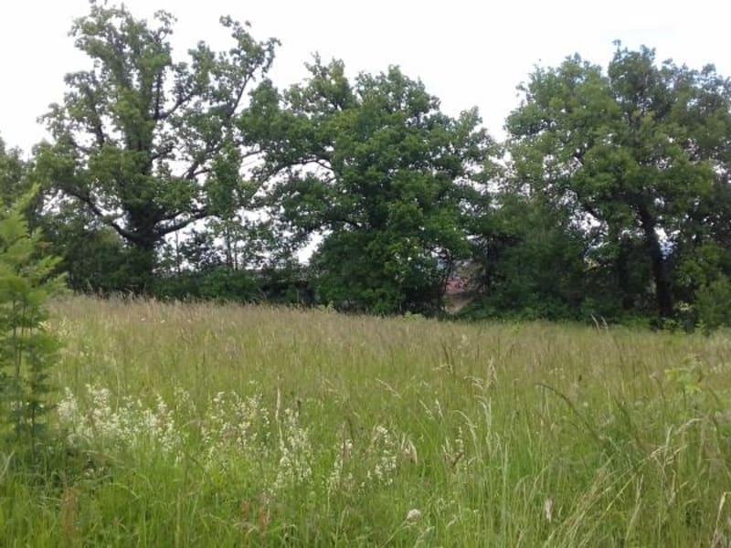 Vente terrain Labruguiere 58500€ - Photo 1
