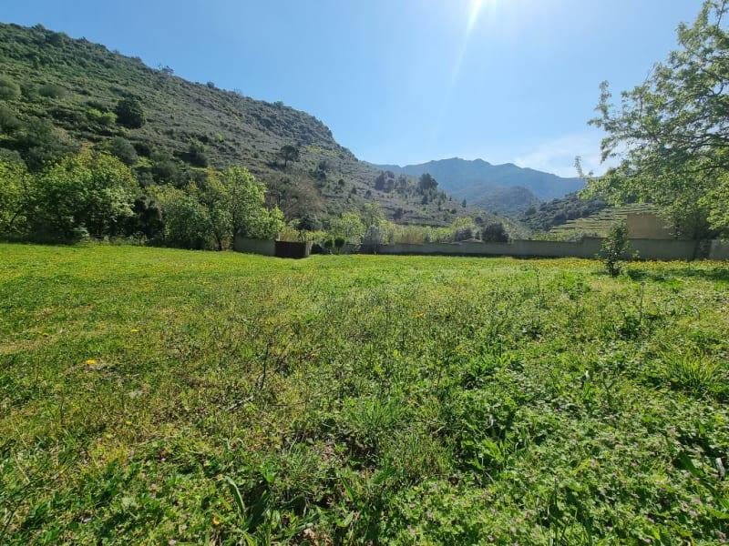 Sale house / villa Banyuls sur mer 628000€ - Picture 5