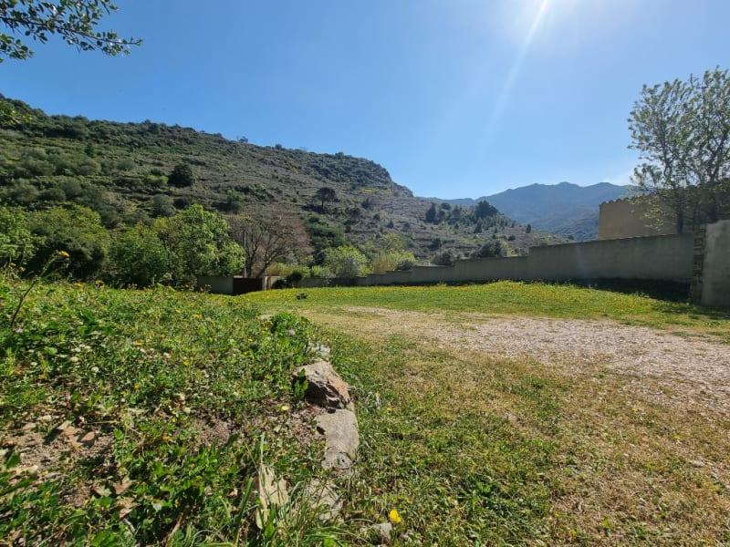 Sale house / villa Banyuls sur mer 628000€ - Picture 6