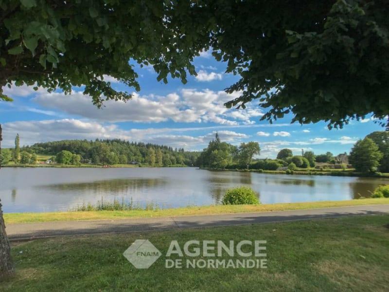 Sale house / villa La ferté-frênel 45000€ - Picture 14