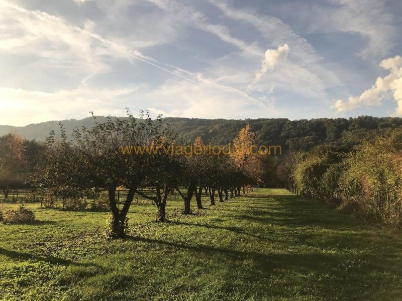 Vitalicio  castillo Chambéry 1090000€ - Fotografía 4