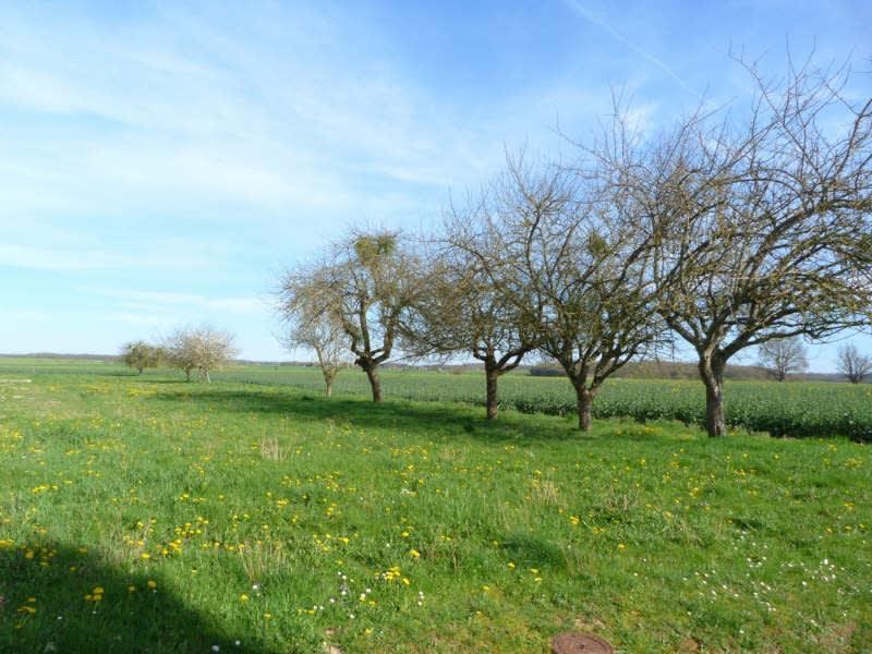 Vente terrain Charny oree de puisaye 30000€ - Photo 1