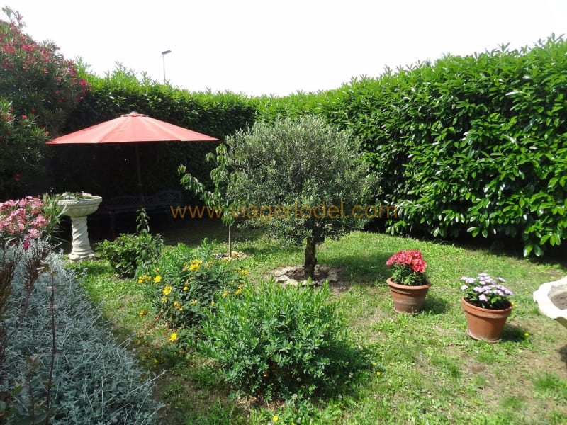 Life annuity house / villa Carcassonne 55000€ - Picture 2