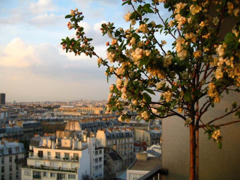 Location appartement Paris 13ème 1250€ CC - Photo 3