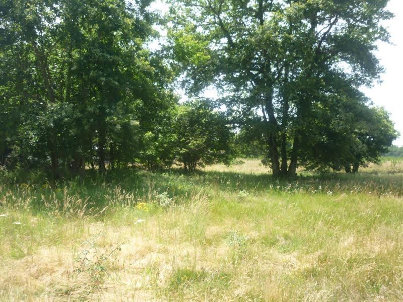 Vente terrain Luxey 56000€ - Photo 2