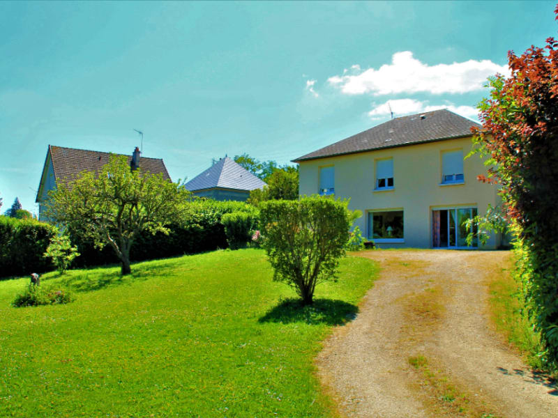 Sale house / villa Beaugency 315000€ - Picture 1