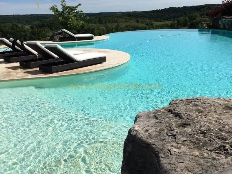 Viager maison / villa Floressas 2 550 000€ - Photo 10