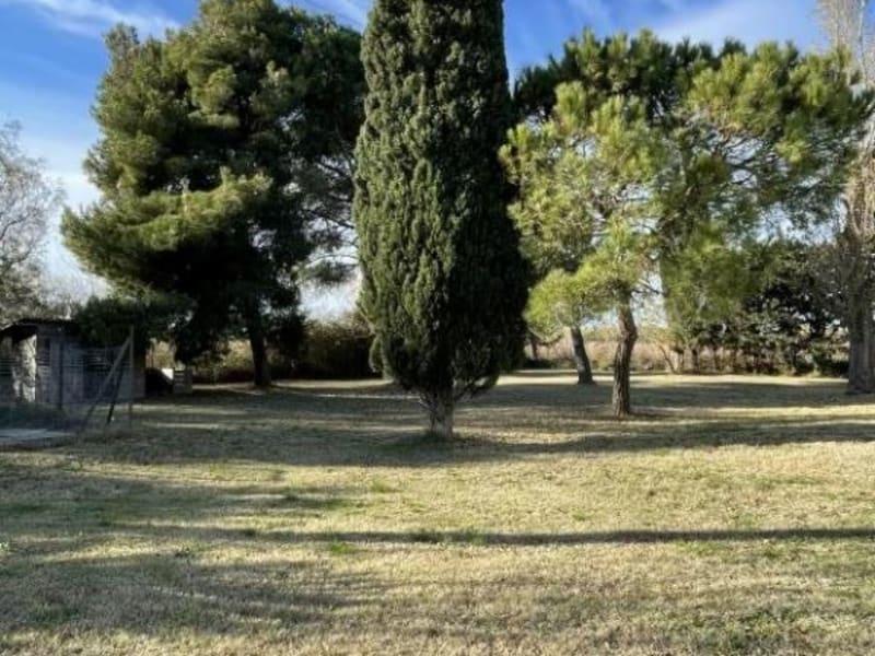 Sale house / villa Saintes maries de la mer 545000€ - Picture 14