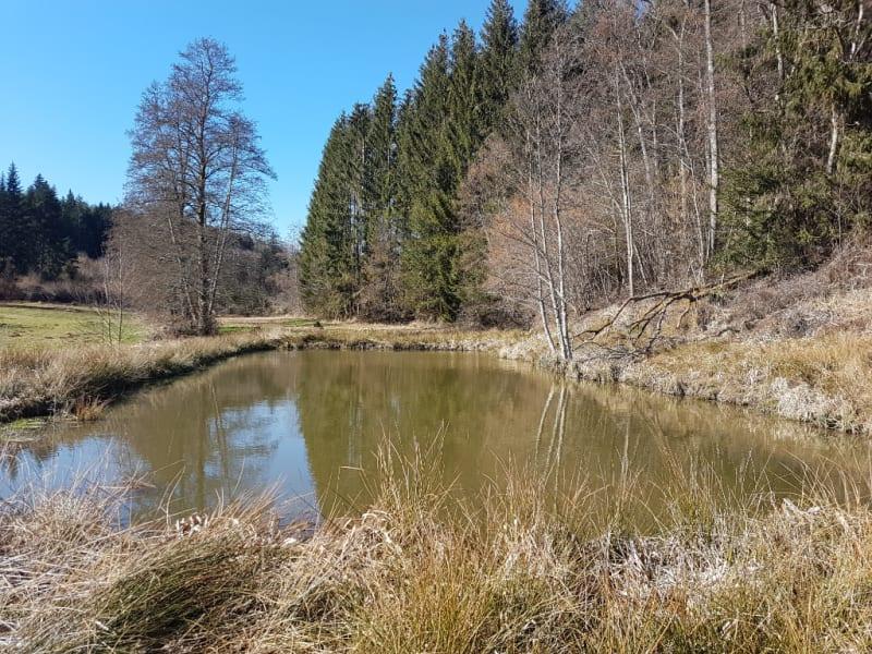 Vente terrain Nompatelize 23600€ - Photo 1