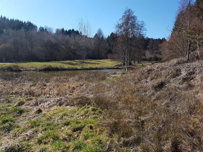 Vente terrain Nompatelize 23600€ - Photo 4