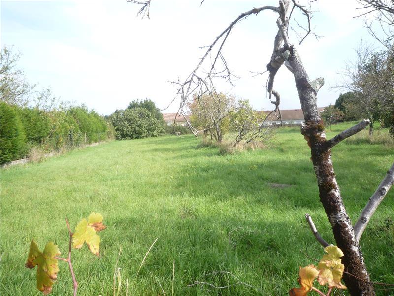 Vente terrain Exireuil 28200€ - Photo 2
