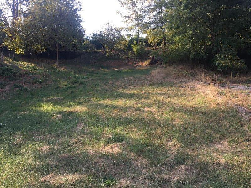 Vente terrain Andance 87000€ - Photo 1