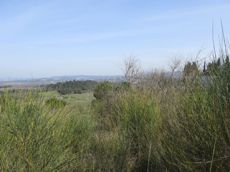 Vente de prestige terrain Carcassonne 94 000€ - Photo 3