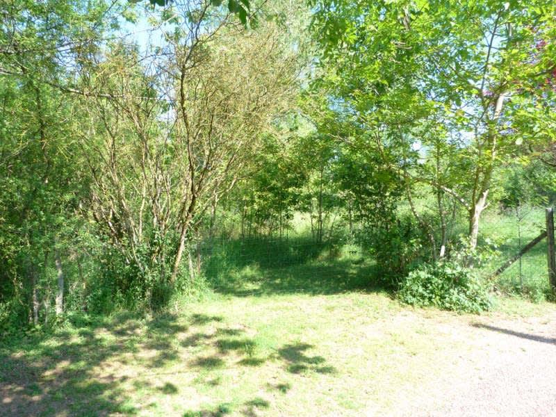 Sale site Charny oree de puisaye 25000€ - Picture 4