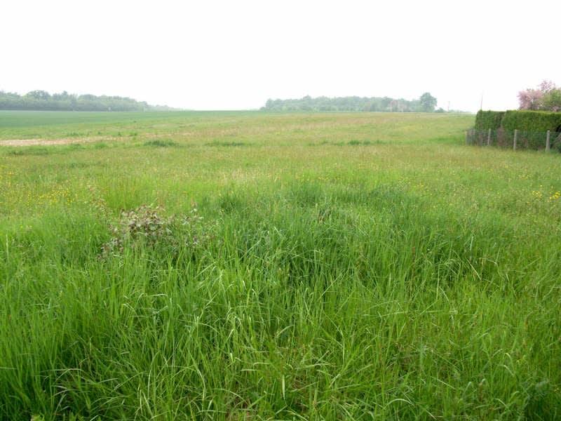 Vente terrain Charny oree de puisaye 9000€ - Photo 1