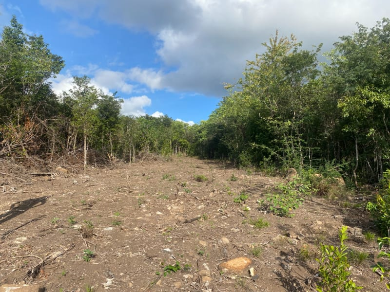 Vente terrain Pointe noire 714000€ - Photo 9