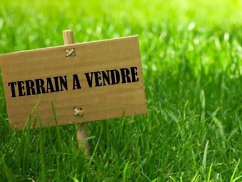 Sale site Beaufort en anjou 35000€ - Picture 1