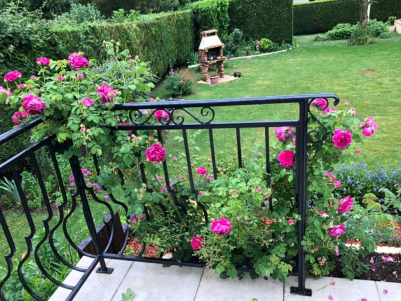 Sale house / villa Falaise 244500€ - Picture 9