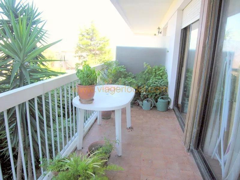 Venta  apartamento Antibes 310000€ - Fotografía 5
