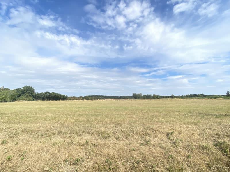 Vente terrain Chatillon coligny 30000€ - Photo 1