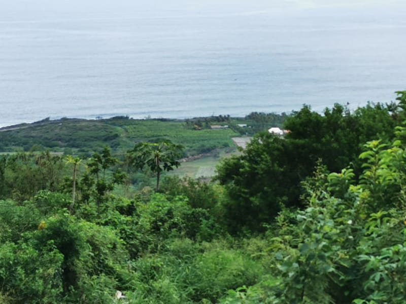 Vente terrain Piton st leu 663 000€ - Photo 2