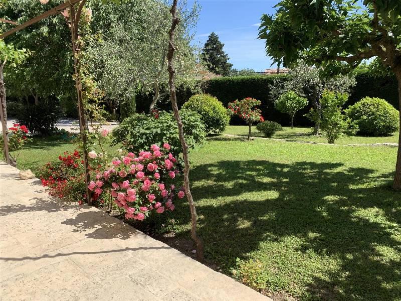 Venta  casa Montauroux 650000€ - Fotografía 3