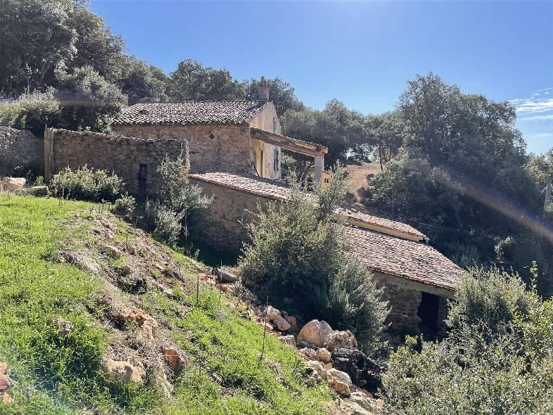 Sale house / villa Aups 550000€ - Picture 3