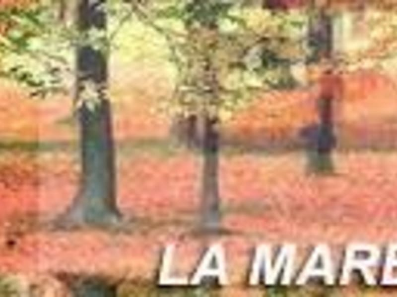 Sale apartment Mareil marly 355000€ - Picture 7