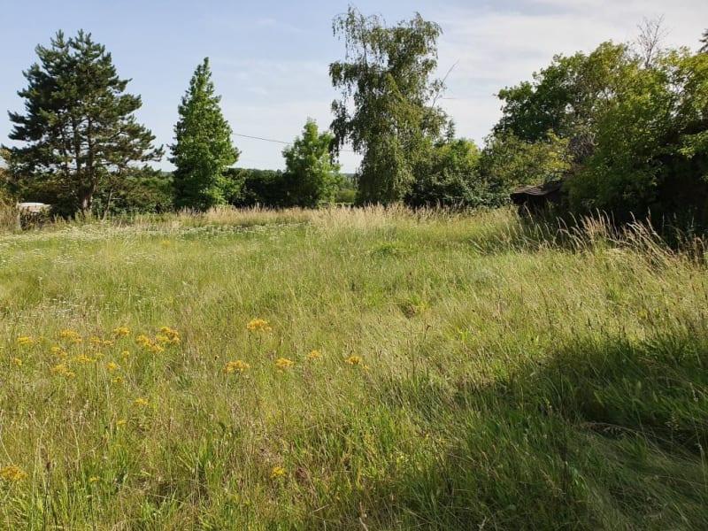 Vente terrain Brannay 35000€ - Photo 4
