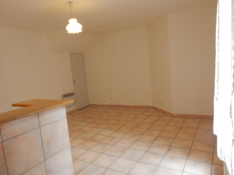 Location appartement Grenoble 375€ CC - Photo 1
