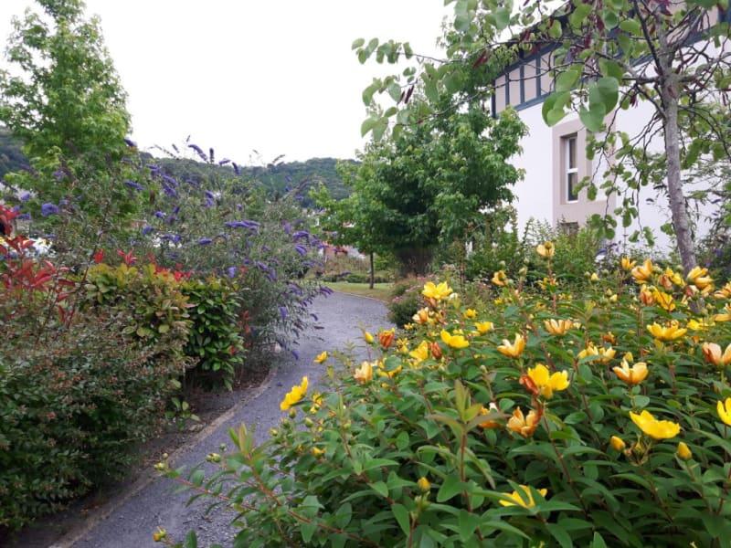 Rental apartment Hasparren 462€ CC - Picture 4