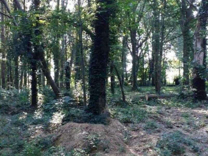 Vente terrain Sereilhac 30000€ - Photo 3