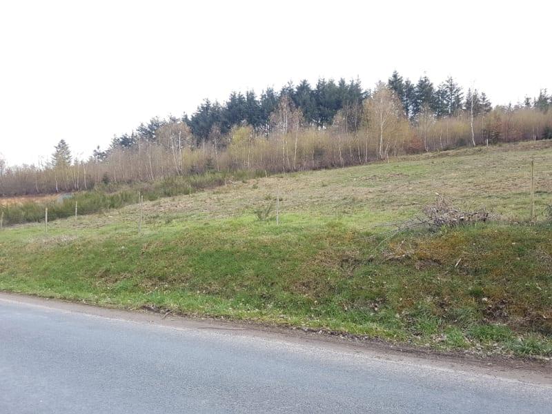 Vente terrain Saulcy sur meurthe 33600€ - Photo 1