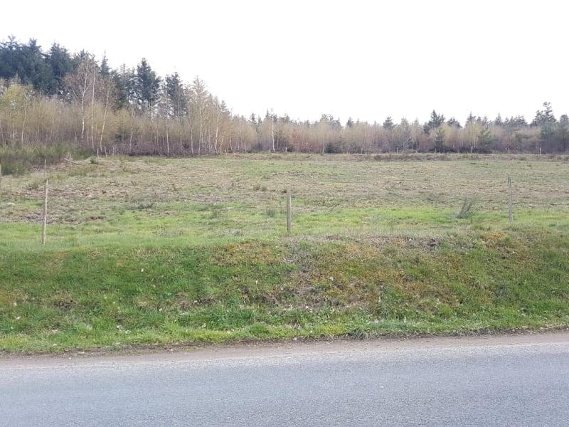Vente terrain Saulcy sur meurthe 33600€ - Photo 2