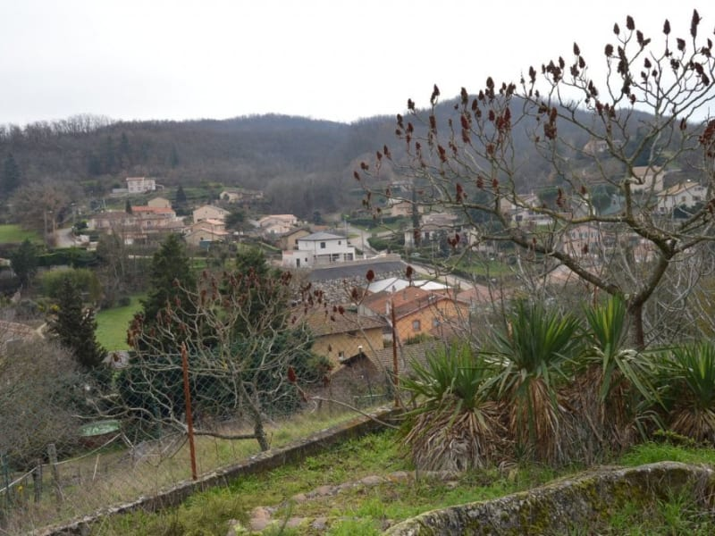 Vente maison / villa Laveyron 235000€ - Photo 13