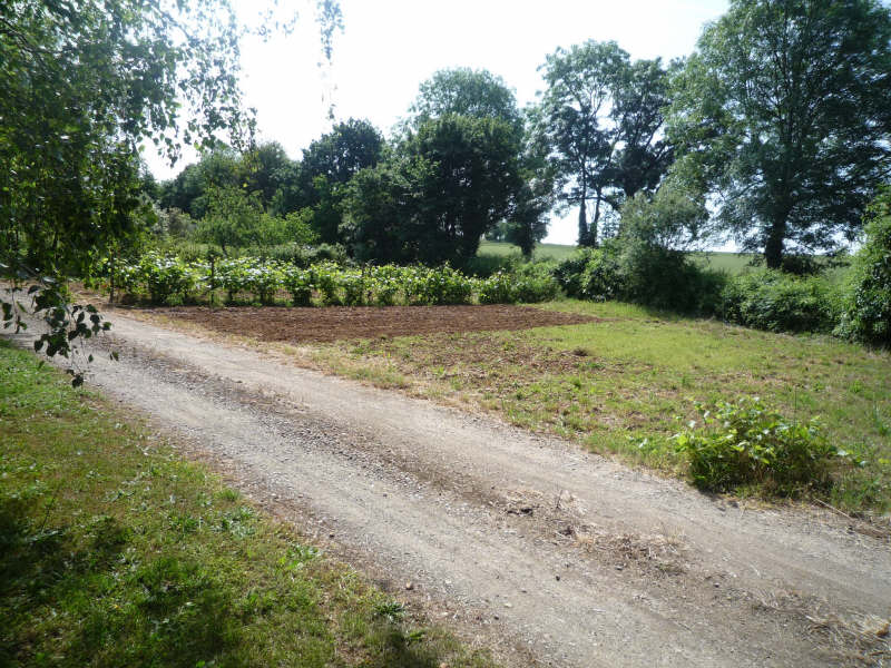 Vente terrain Ste eanne 28200€ - Photo 6