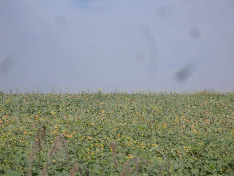 Vente terrain St maixent l ecole 187200€ - Photo 6