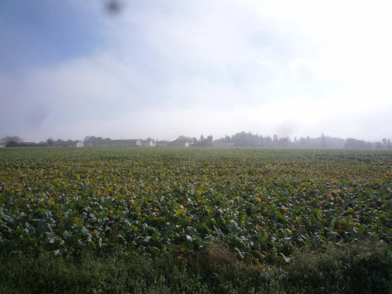 Vente terrain St maixent l ecole 187200€ - Photo 7