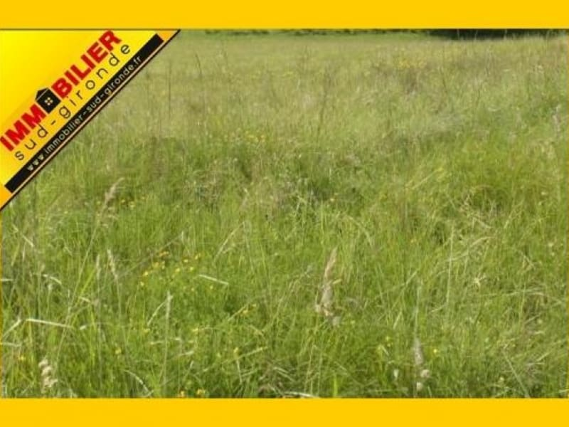 Verkauf grundstück Langon 87200€ - Fotografie 2