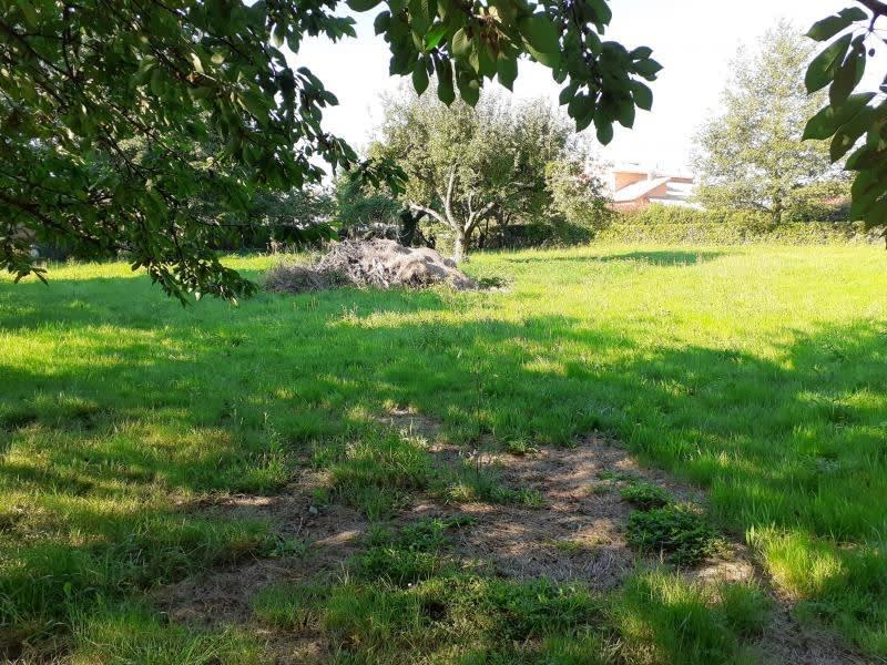 Vente terrain Sereilhac 30000€ - Photo 4