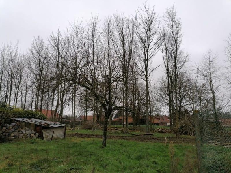 Sale house / villa Auchy au bois 239200€ - Picture 16