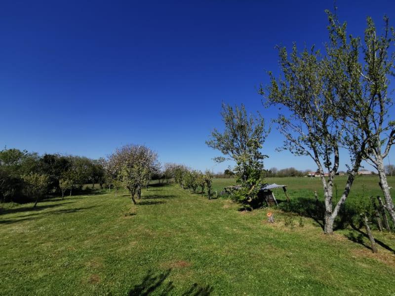 Vente maison / villa Sainte eanne 79375€ - Photo 2