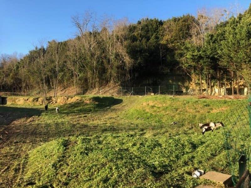 Vente terrain Bourg 86000€ - Photo 5